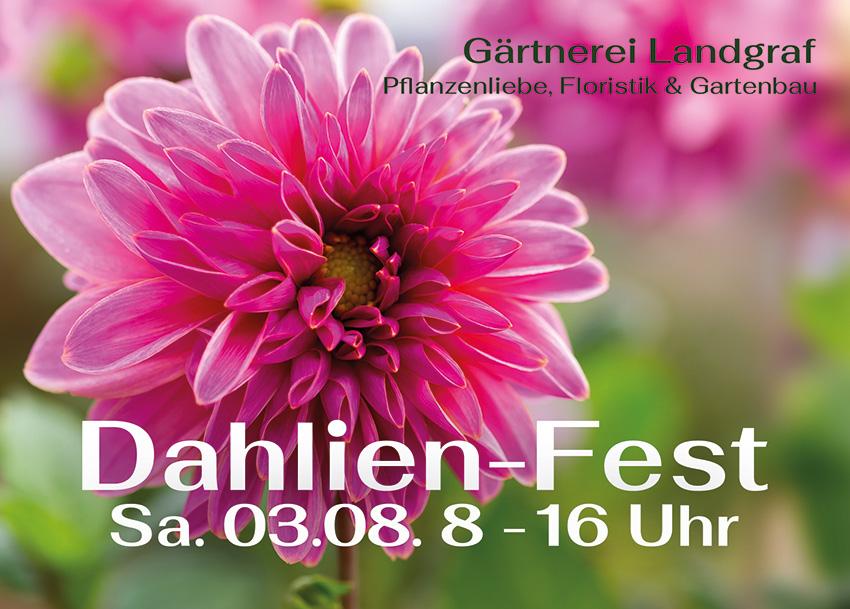 Einladung zum Dahlien-Fest am 3.8. in Eckental/Brand