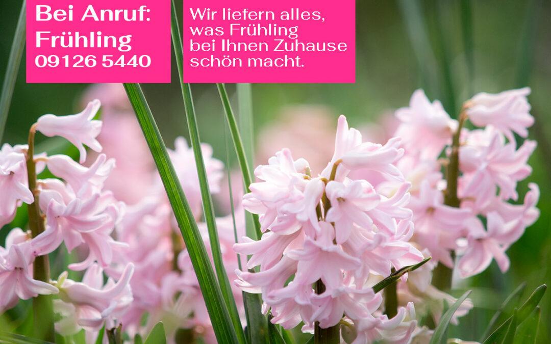 Lieferservice: Neu: Wir liefern Blumen, Pflanzen, bepflanzte Gefäße & mehr
