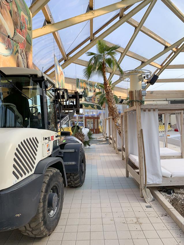 Ausgewachsene Palmen in einer Freizeitanlage zu pflanzen ist Präzisionsarbeit.
