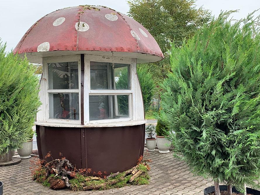 Pillz-Kiosk an seinem neuen Standort vor der Gärtnerei